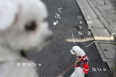 12_15_6793.jpg
