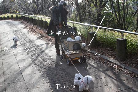 12_15_6879.jpg