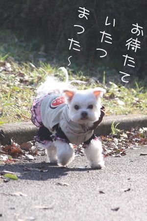 12_17_7090.jpg