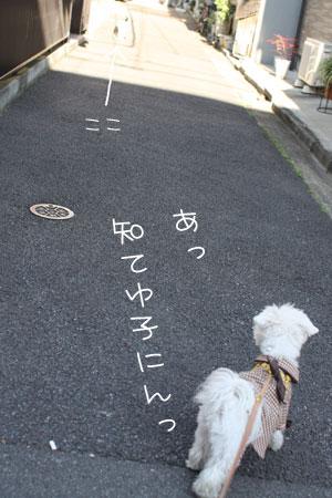 12_18_6882.jpg