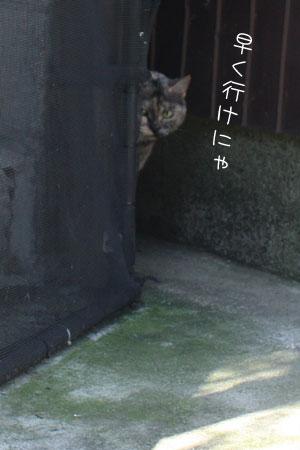 12_18_6916.jpg