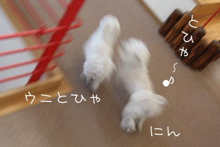 12_18_7126.jpg