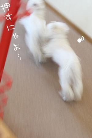 12_18_7127.jpg