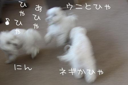 12_18_7161.jpg