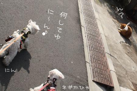 12_19_7009.jpg