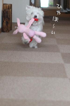 12_20_7063.jpg