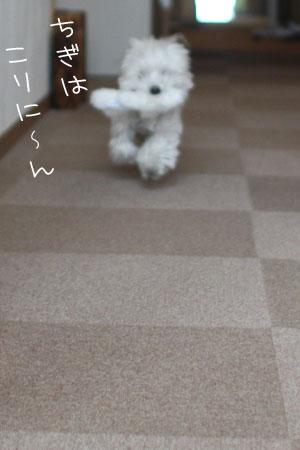 12_20_7077.jpg