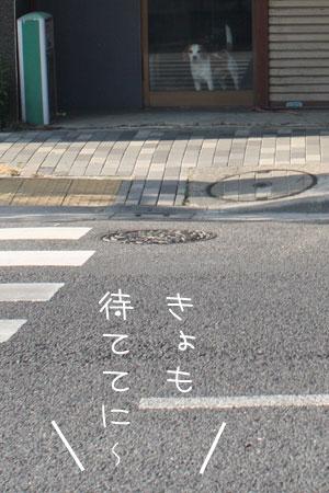 12_20_7101.jpg