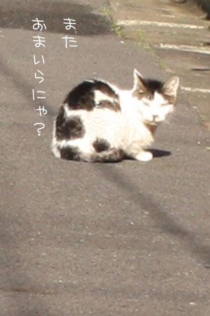 12_20_7109a.jpg