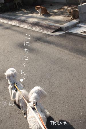 12_20_7123.jpg