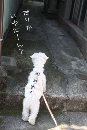 12_20_7131.jpg
