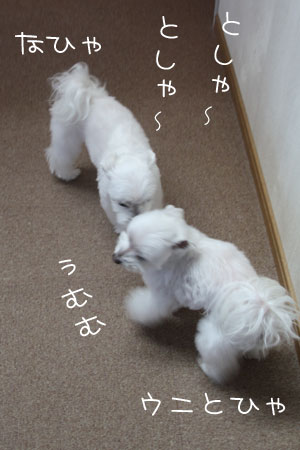 12_21_7765.jpg