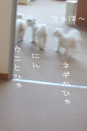 12_21_7771.jpg