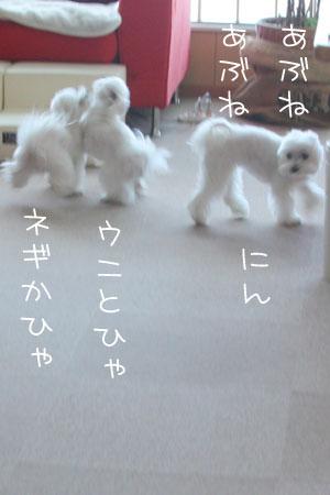 12_21_7776.jpg