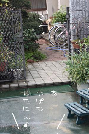 12_22_7259.jpg