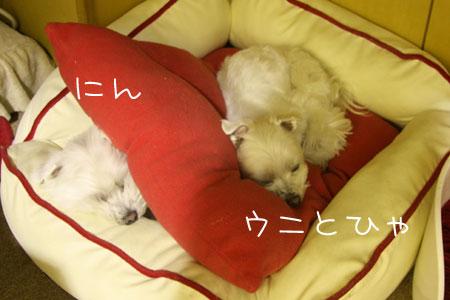 12_23_8314.jpg