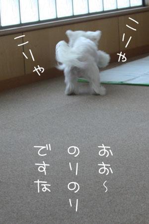 12_23_8377.jpg