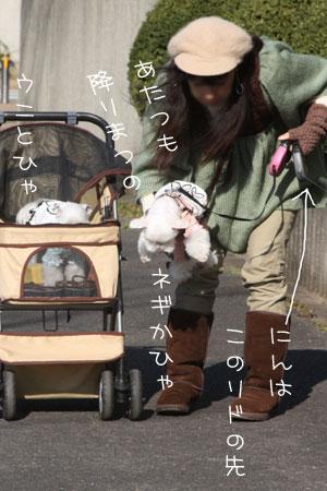 12_23_8429.jpg