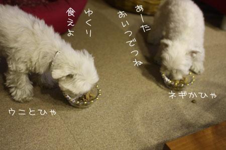 12_24_7519.jpg
