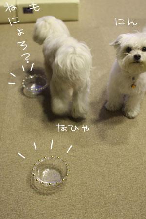 12_24_7532.jpg