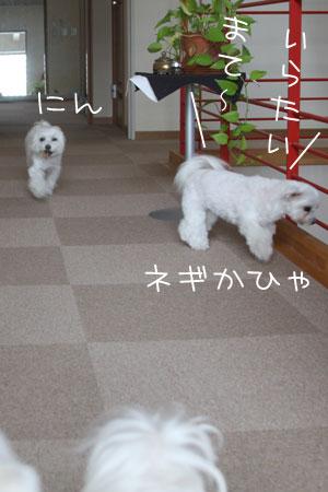 12_26_9186.jpg