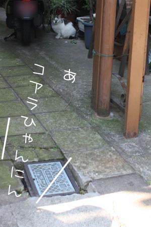 12_29_7894.jpg