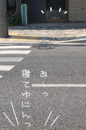 12_29_7920.jpg