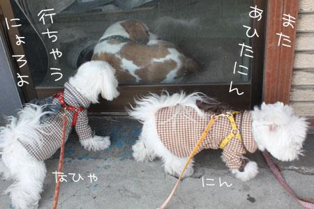 12_29_7933.jpg