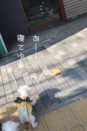 12_2_6002.jpg