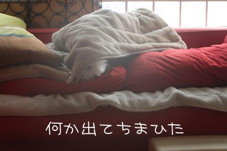 12_30_9738.jpg