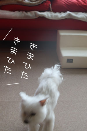 12_30_9751.jpg