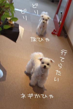 12_31_9867.jpg