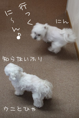 12_31_9883.jpg