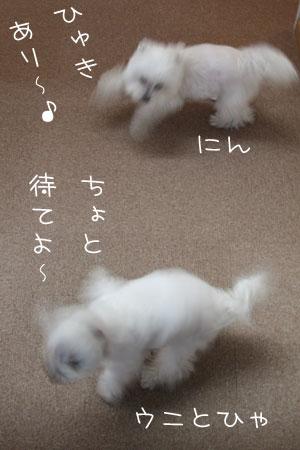 12_31_9887.jpg