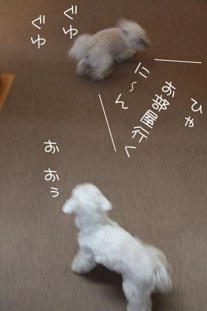 12_31_9890.jpg