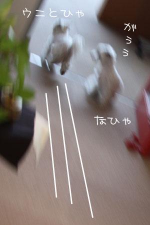 12_31_9892.jpg