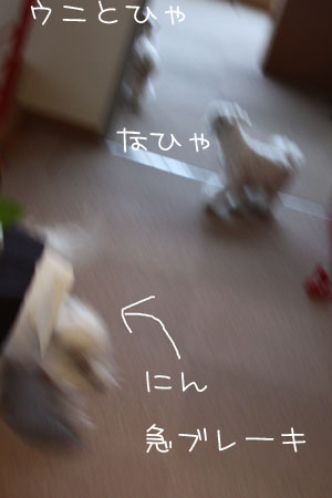 12_31_9893.jpg