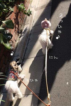 12_4_6061.jpg