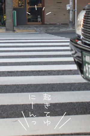 12_5_6192.jpg