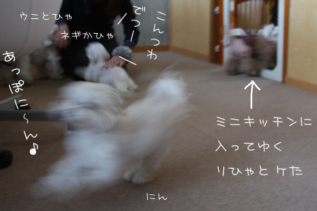 12_8_6395.jpg