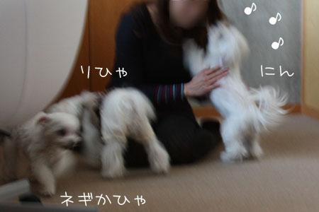 12_8_6408.jpg