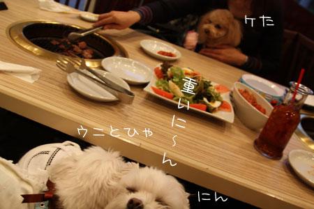 12_8_6519.jpg
