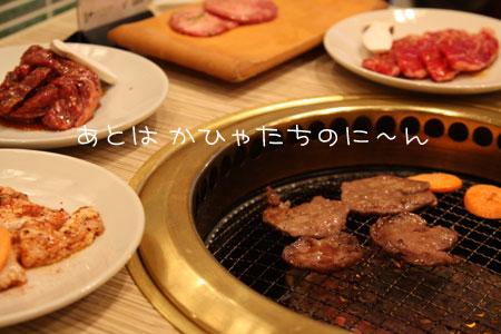 12_8_6526.jpg