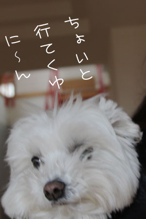 12_9_5800.jpg