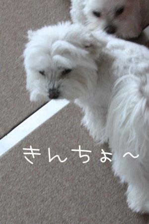 12_9_5814a.jpg