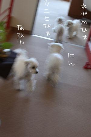 1_10_1213.jpg