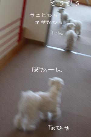 1_10_1216.jpg