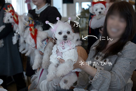 1_10_8711b.jpg
