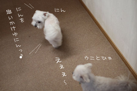 1_13_0010.jpg