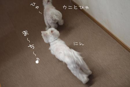 1_13_0014.jpg